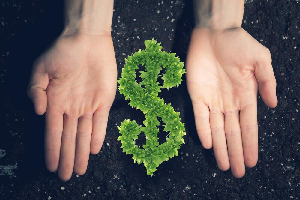 Bolsa de valores - 5 dicas de como investir